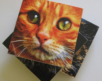 Cat coasters.  Recycled tiles.  Coasters with cats. Coster set. Gift for cat lovers.