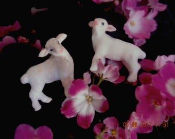 lamb set of knobs