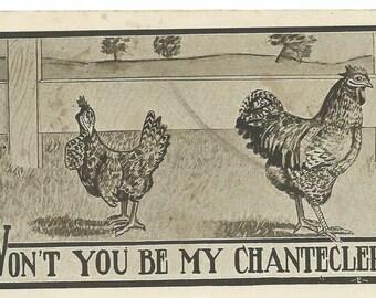 Vintage 1911 Comic Roosters Postcard
