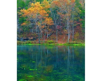 "Fine Art Color Photography of Natural Spring in the Missouri Ozarks - ""Alley Spring and Autumn Colors"""