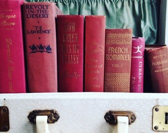 Dark Pink / Burgundy  Books Instant Library Collection by Color Photography Props Vintage Decorative Books