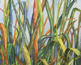 STALKS - Giclee  Print of Original Watercolor Painting