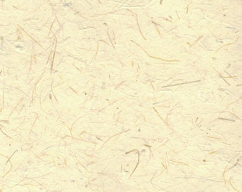 Yellow Wheat Straw and Cotton Paper 11x14 - Natural Fine Art Paper with Deckled Edges