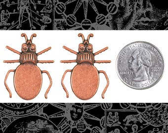 Copper Plated Brass Beetle Flat Setting on Back Set of Two * C-P71