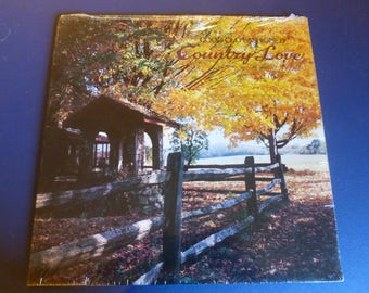 Good Old Fashioned Country Love Vinyl Record LP 1P 7268 MCA Records 1981
