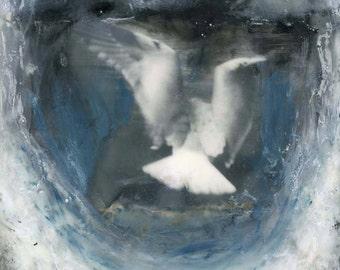 "Angela Petsis, Encaustic Collage, Mixed Media Art, Encaustic Art, Flight, Bird Art, Encaustic Painting - ""Soar"", Original Art"