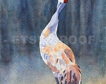 Sandhill In The Mist watercolor art, bird print, autumn scene, courting dance, sandhill crane print