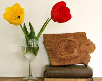 IOWA Solid Wood Wall Decor (Mini size), Gallery Wall