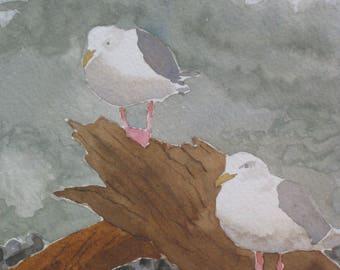 Seagulls On Driftwood