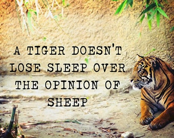 A Tiger Doesn't Lose Sleep Over the Opinion of Sheep - Fine art print, Tiger Portrait, Motivational, Large Wall Art, Colorful, Nature