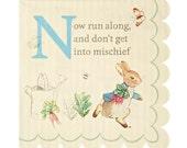 Peter Rabbit Small Napkins by Meri Meri | Beatrix Potter Party | Peter Rabbit Birthday | Peter Rabbit Baby Shower