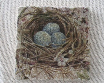 Bird Nest Coasters - Home Decor - Spring - Nature - Stone Coasters - Bluebird