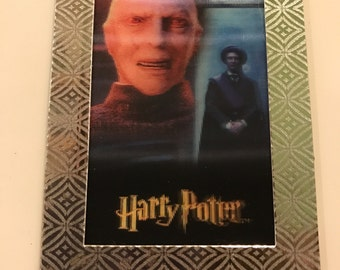 harry potter fridge magnet - special edition voldemort & quirrell