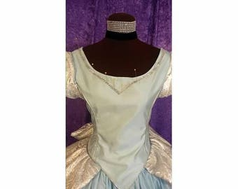 Warehouse Sale - Cinderella Gown for teen or small adult
