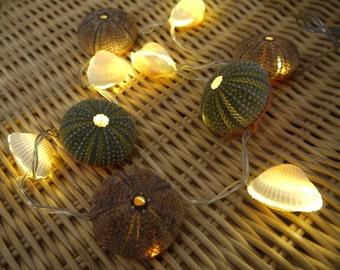 Sea Urchin & seashells light, string ball light