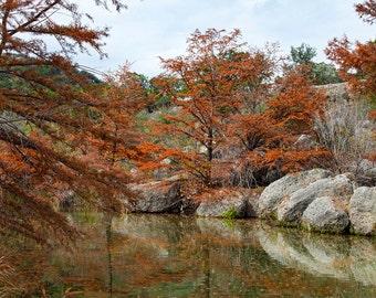 Medina River Rocks