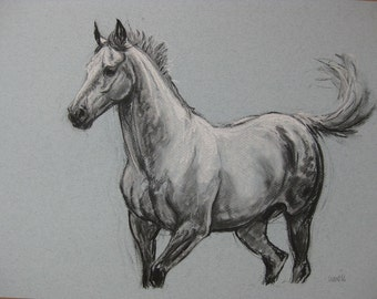 Original horse art equine art energy and movement equine horse charcoal and chalk movement art drawing 'Playtime I' by H Irvine