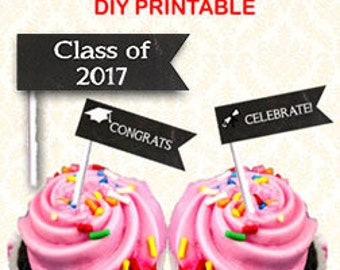 Graduation Party Food Flags, Printable Class of 2016 Straw Flags, DIY Grad Party Decorations, Chalkboard Flags Cupcake Toppers, Instant