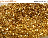 Boxing Week Sale DB-31, Miyuki Delica Beads, Size 11/0, 24kt Plated Bright Gold - 2 grams or, choose a Larger Pkg from the 'Select an Option