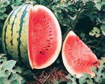 Crimson Sweet Heirloom Watermelon Seeds Non GMO
