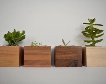 Small Succulent Planter