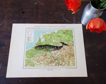 Germany, printing whale in black paint on old country map