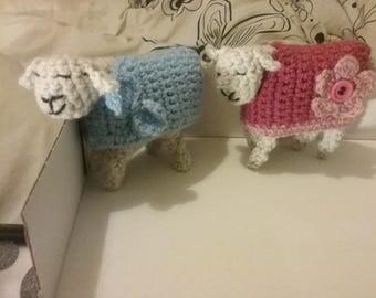 Little Woolly Sheep