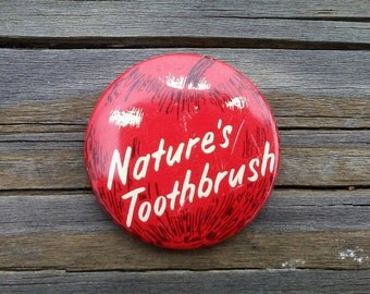 "Vintage Pin Apple ""Nature's Toothbrush"" 1.5"" Retro Pin to Add to Collection Apple Pin Apple Gift Apple Lover Fruit Pin Funky Retro Accessory"