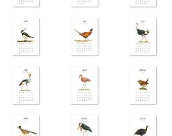 CALENDAR - Bird calendar - 12 different birds watercolor paintings prints - monthly birdds art decor- flamingos etc Art Prints by Juan Bosco