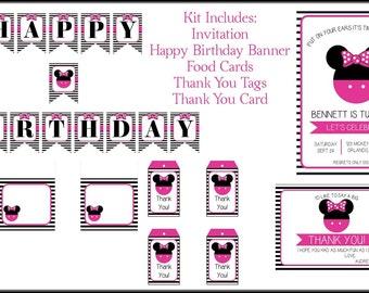 Minnie Mouse Birthday Kit