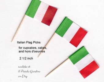 Italian Flag Picks Cupcake toppers Cake rustic theme picnic party outdoor garden party
