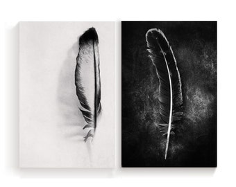 Set of 2 Prints Feather Fine Art photography Black and White Art Vertical 2 Prints Minimalist Living Modern Wall Art Prints decor 2 Feathers