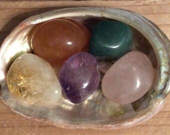 Healing Stone Starter Set with Shell, Healing Stone, Healing Crystal,Chakra Stone