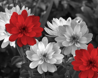 Black White Red Flowers Decor, Red Bathroom Bedroom Picture, Red Gray  Modern Home Decor