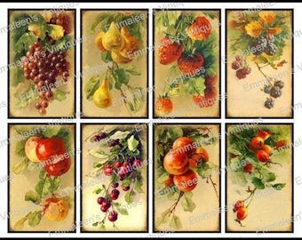 8 Vintage Grunge Victorian Vintage Fruit Collage Sheet ATC ACEO / Vintage Fruit Digital Collage Sheet Tags Images—Printable Ephemera