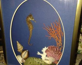 Sea Horse and Shells Ocean Scene Shadow Box Wall Hanging