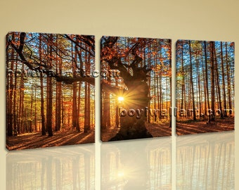 Large Autumn Forest Sunrise Landscape Photography On Canvas Art Print Home Decor, Large autumn Wall Art, Living Room, Indian Tan