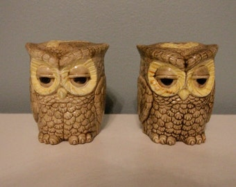 Set of Vintage Owl Salt and Pepper Shakers - FREE SHIPPING in the USA