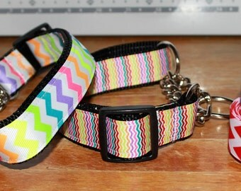1 inch wide -  CHEVRON Metal/Chain Martingales  - With Names