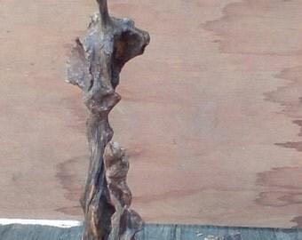 Root sculpture in elm