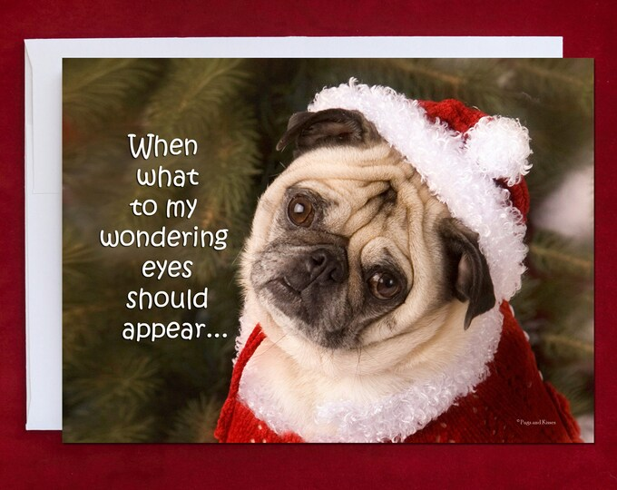 Funny Holiday Card - Pug Holiday Card - 5x7 - When What To My Wondering Eyes Should Appear