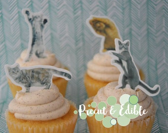 24 cat cupcake topper, kitten cupcake topper,edible & precut, cats, birthday topper, cat cake, kitty topper, edible cupcake topper