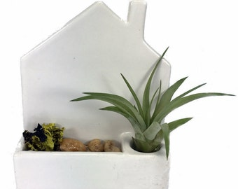 """Magnetized Modern House with Living Air Plant - 4"""" x 1.5"""" x 4.5"""""""
