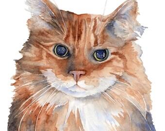Custom Watercolor Cat Portrait 8.5 x 11