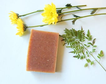 Fruit Smoothie Natural Hair Shampoo Bar