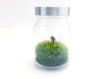 Down to Business Moss Terrarium, Glass Terrarium, DIY Terrarium Kit