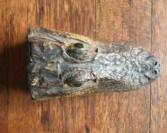 Vintage Alligator Head Taxidermy