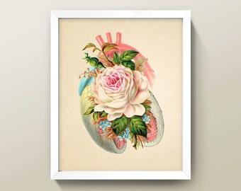 Heart & Rose Collage • 8x10 Wall Art · High Quality Giclée Print • Human Anatomy / Flower