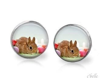 Ear Easter Bunny of bunnies 5