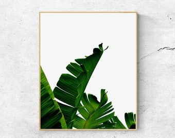 Banana leaf print, Palm leaf, Scandinavian print, Wall art prints, Palm tree print, Nature prints, Large Printable wall art, Modern print